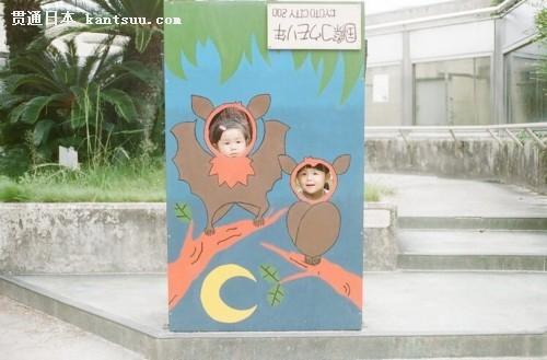 日本摄影师的可爱双胞胎女儿 火爆朋友圈!